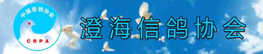 澄海信鸽协会